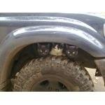 Коты на колесе
