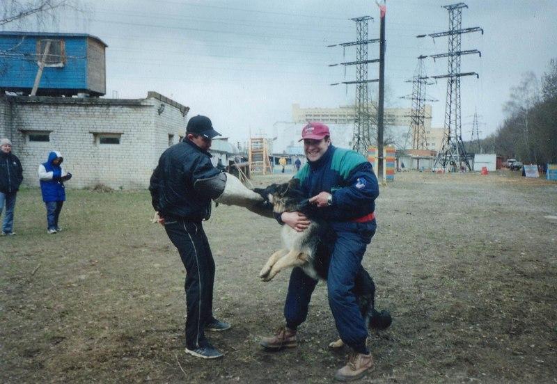 Собачья поза с бабами 3 фотография