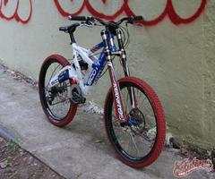 Scott Octane DH WC (Team Germany proto)