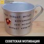 voyaker